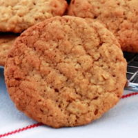 Sugar free oats biscuits